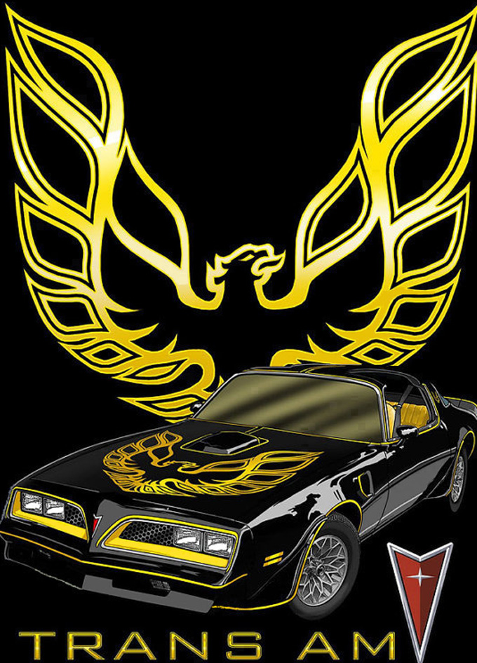 CRAFTS Pontiac Trans Am Fire-Bird Cross Stitch Pattern***LOOK***Buyers Can Download Your Pattern As Soon As They Complete The Purchase