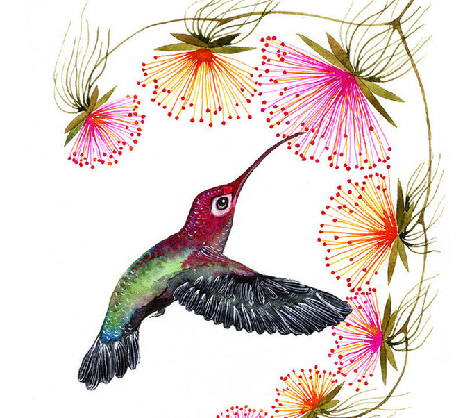 Colorful Humming Bird Cross Stitch Pattern***LOOK***