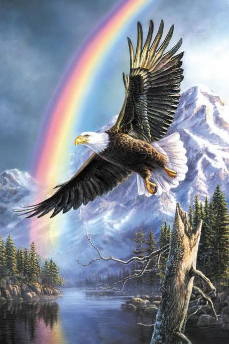CRAFTS Eagle Rainbow Cross Stitch Pattern***LOOK***