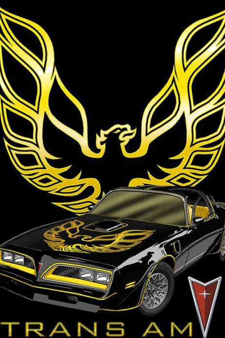 CRAFTS Pontiac Trans Am Fire-Bird Cross Stitch Pattern***LOOK***