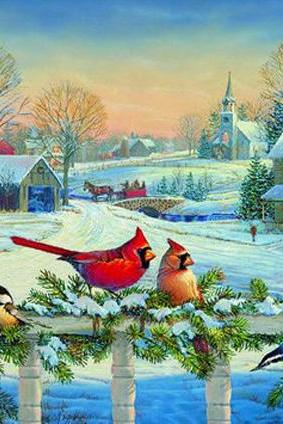 CRAFTS Birds At Christmas Time Cross Stitch Pattern***LOOK***
