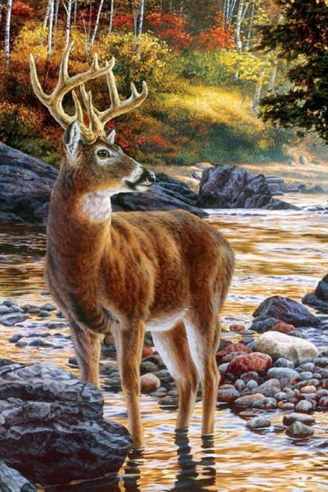 CRAFTS Shallow Deer Crossing Cross Stitch Pattern***LOOK***