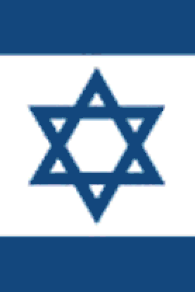 CRAFTS Israeli Flag Cross Stitch Pattern***LOOK***
