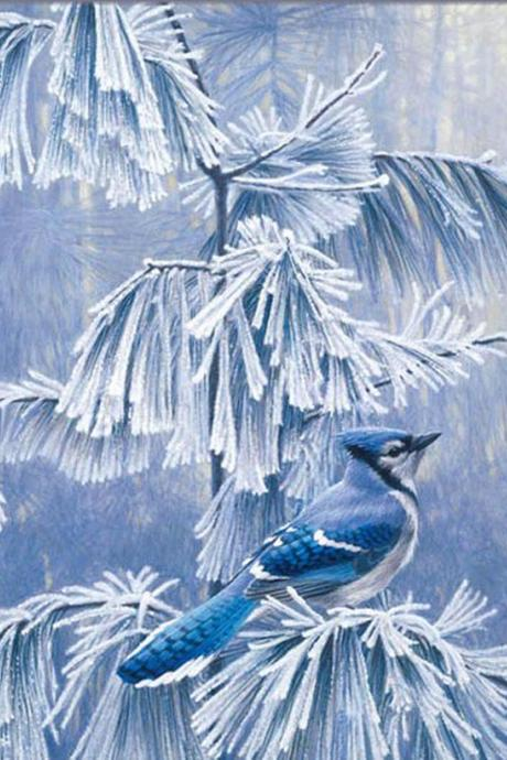 CRAFTS Frosty Morning BLue Jay Cross Stitch Pattern***LOOK***Buyers Can Download Your Pattern As Soon As They Complete The Purchase