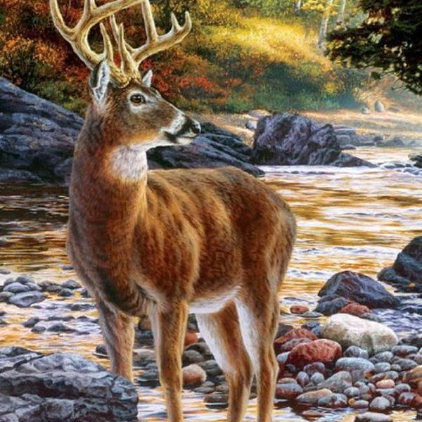 pdf Sewing Home Dmc Hand Made Crafts Shallow Deer Crossing Cross Stitch Pattern***LOOK***