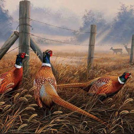 CRAFTS Meadow Mist Pheasants Cross Stitch Pattern***LOOK**$4.95