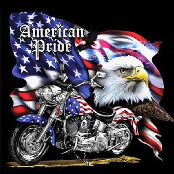 CRAFTS American Pride MotorCycle Cross Stitch Pattern***LOOK***Buyers Can Download Your Pattern As Soon As They Complete The Purchase